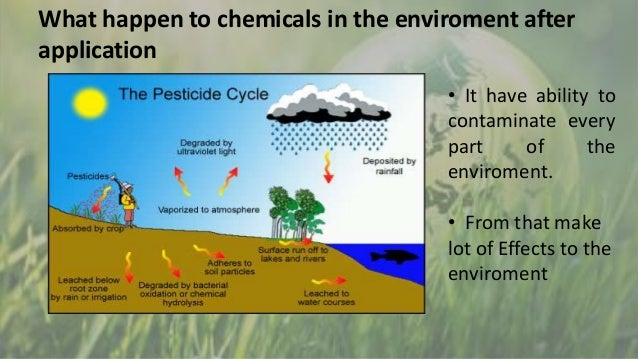 effect of hormones and pesticides on environment and humans The environmental protection agency announced today it will order pesticide manufacturers for the first time to test 67 chemicals contained in their products to determine if they disrupt the.