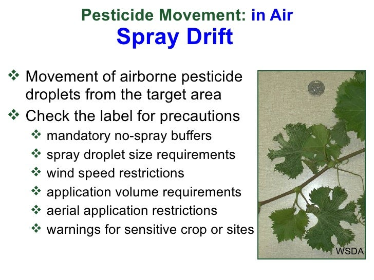 environmental effects of pesticides essay Essays - largest database of quality sample essays and research papers on use of fertilizers and pesticides environmental effects of pesticides.