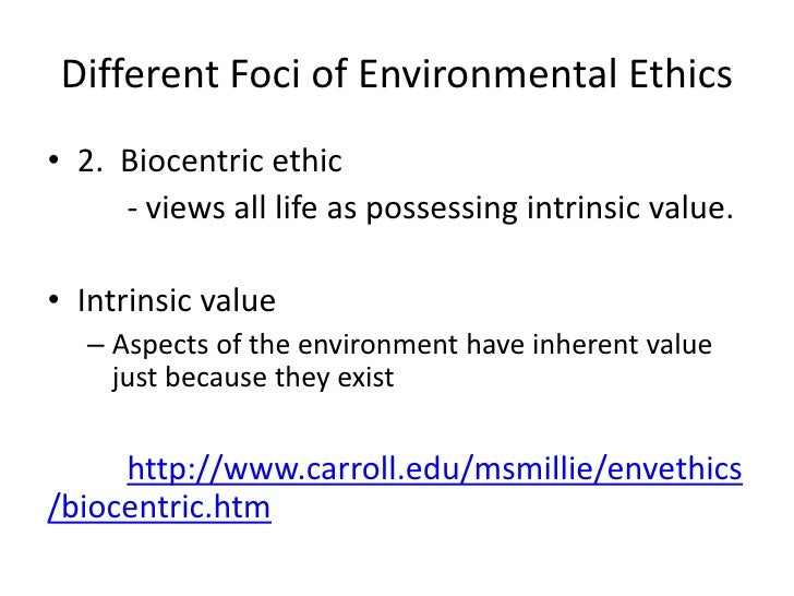 intrinsic value of environment essay