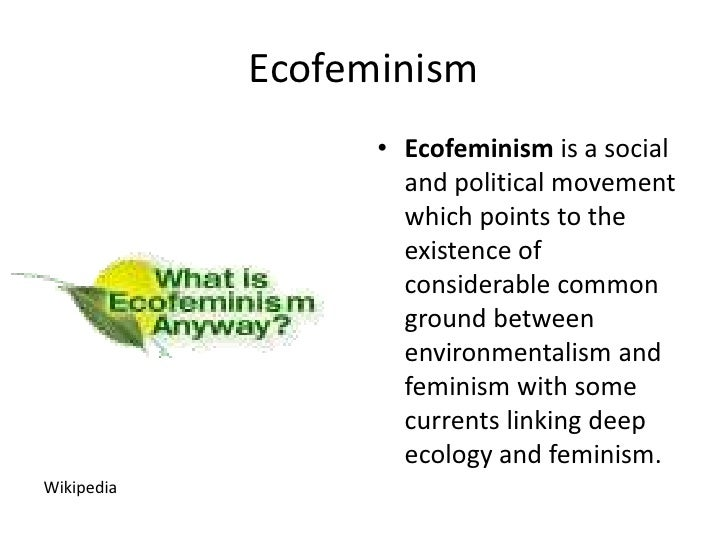 deep ecology in addition to religion essay
