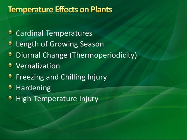 environmental factors for plant growth Living environment review  of different environmental factors on the growth of a certain species of bean plant over a period of 30 days which factor would not.