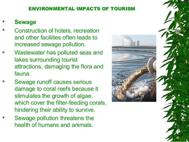 environmental impact on tourism in canada Table 5 environmental laws on the environmental impact of tourism in mexico from the united states and canada into mexico, as consumers of services.