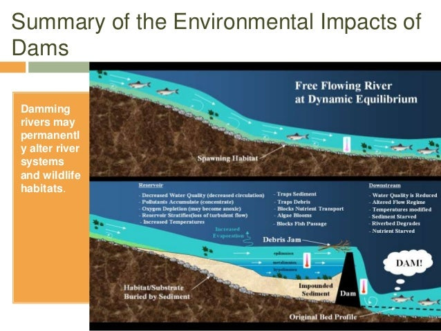 effects of dams Effects of dam building  not knowing the full intensity of their side effects the hindering effects of dams on humans and their environment heavily outweigh the.
