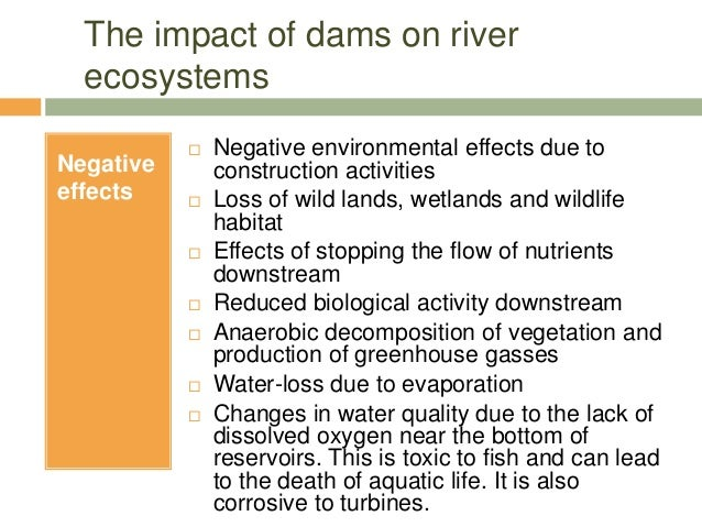 effects of dams After 150 years of dam-building in australia, we wonder if dams  and that it  could manage the effects around the dam's footprint such that.