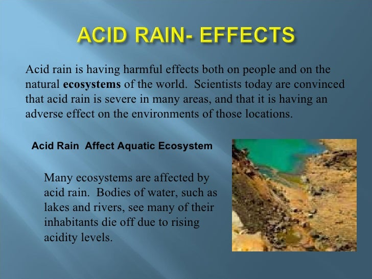 harmful effects of acid rain in points