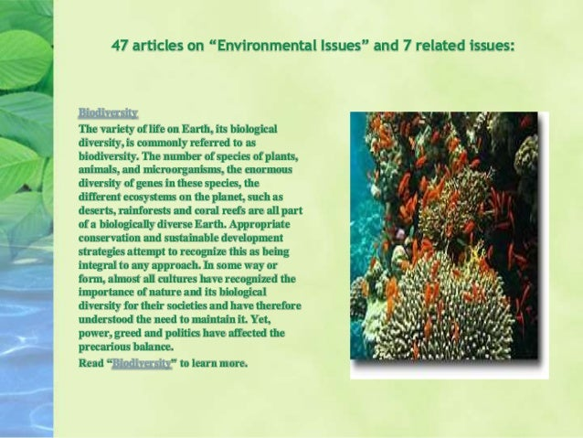 articles on the subject of ecological difficulties 2013