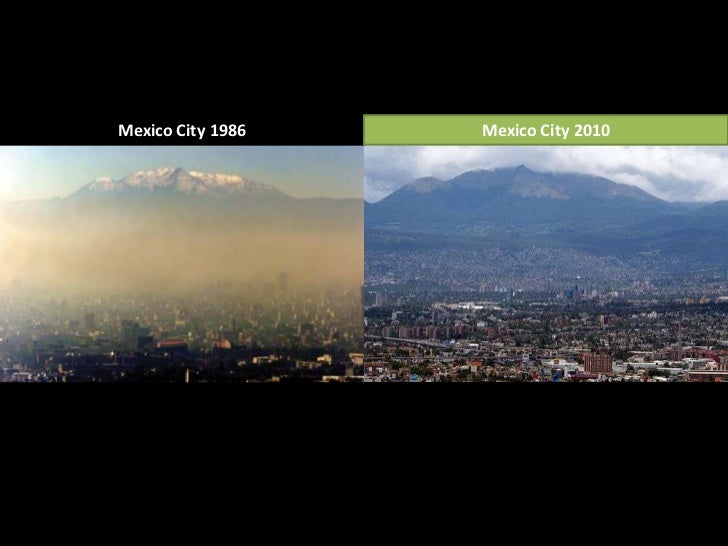 ecological issues in mexico city essay In this context, the mexico city's government decided to implement a programme of infrastructure development that allows the reduction of traffic and its environmental problems.
