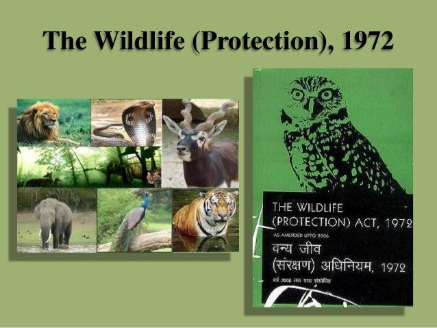 what is environmental law pdf