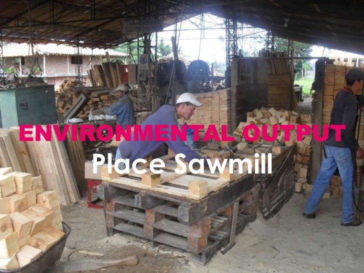 ENVIRONMENTAL OUTPUTPlace Sawmill<br />