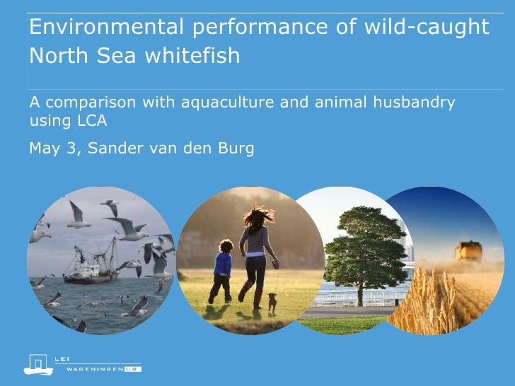Environmental performance of wild-caughtNorth Sea whitefishA comparison with aquaculture and animal husbandryusing LCAMay ...