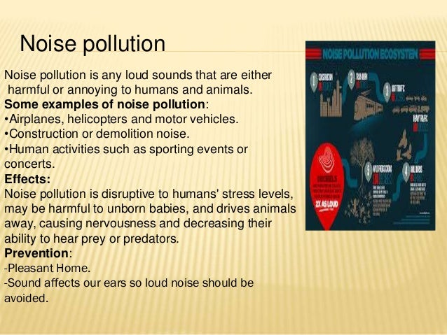 role of students in prevention of pollution Role of ngo's in protecting environment and health  conservation plan envisaging the conservation of lakes by prevention of pollution  ngo's role.