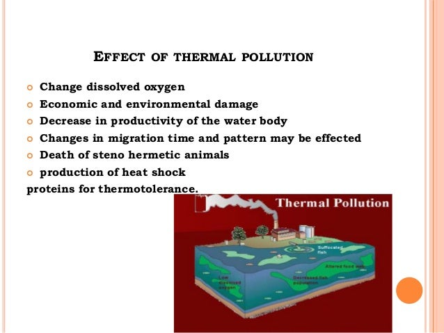 a description and effects of pollutants in our bodies The borderless nature of atmosphere and oceans inevitably resulted in the implication of pollution on a planetary level with the issue of global warming most recently the term persistent organic pollutant (pop) has come to describe a group of chemicals such as pbdes and pfcs among others though their effects remain.