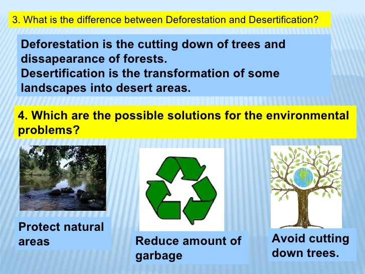 environmental problems and solutions  animals desertification 12 4 which are the possible solutions for the environmental problems