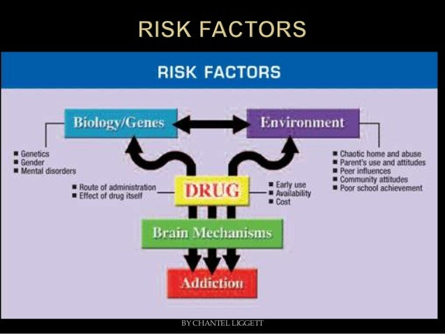 what have research studies in the field of genetics had to say about possible causes of crime