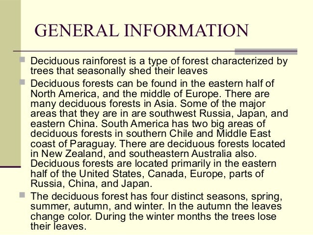 Deciduous rainforest report (Environmental Science)