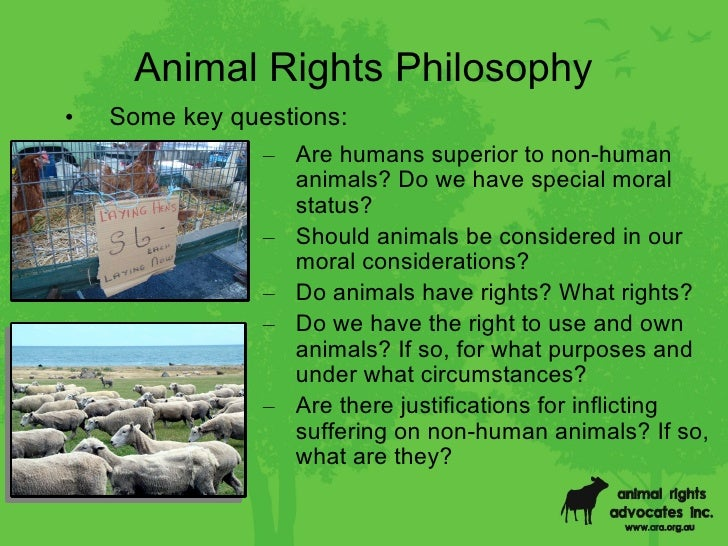 are humans superior to animals
