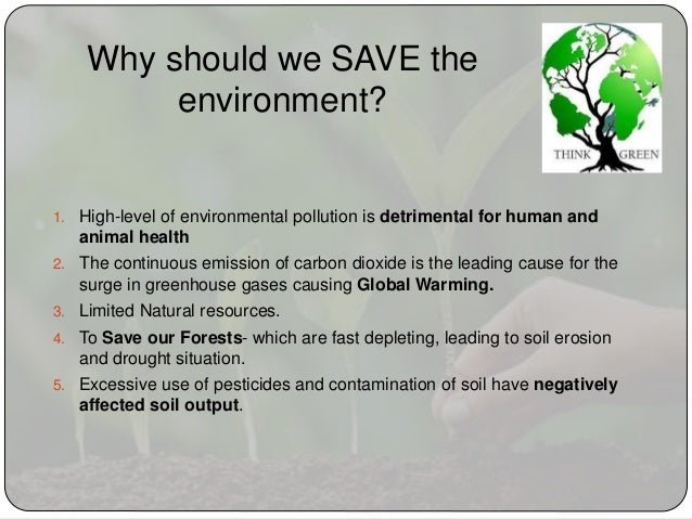 environment essay 6 why should we save the environment