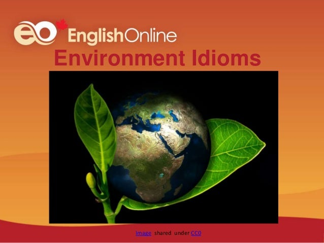 Environment Idioms Image shared under CC0