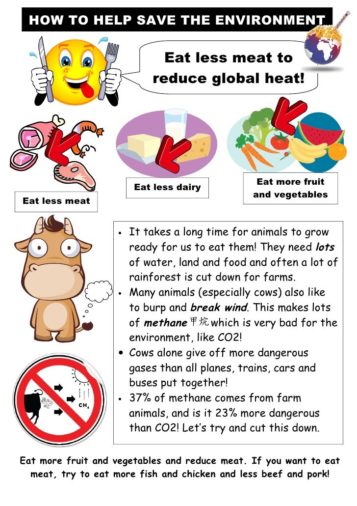 is it bad to eat meat and dairy together tom s tefl help save the environment posters 648