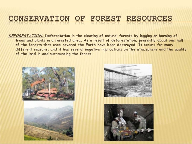 CONSERVATION OF FOREST RESOURCESDEFORESTATION: Deforestation is the clearing of natural forests by logging or burning of  ...