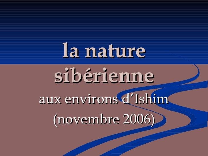 la nature sibérienne aux environs d'Ishim (novembre 2006)