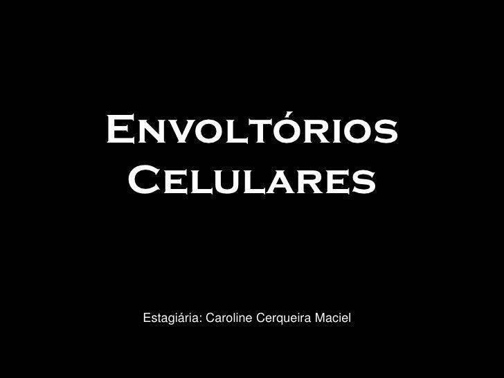 Envoltórios  Celulares    Estagiária: Caroline Cerqueira Maciel