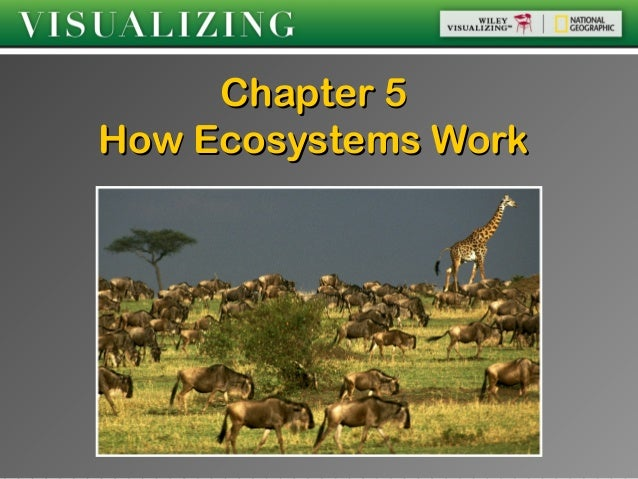 Chapter 5How Ecosystems Work