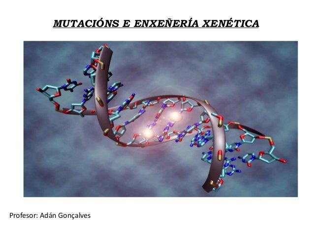 MUTACIÓNS E ENXEÑERÍA XENÉTICA Profesor: Adán Gonçalves