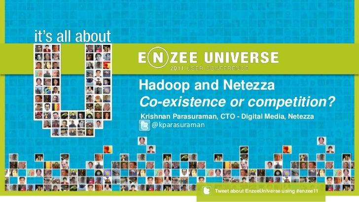 Hadoop and Netezza<br />Co-existence or competition?<br />Krishnan Parasuraman, CTO - Digital Media, Netezza<br />@kparasu...