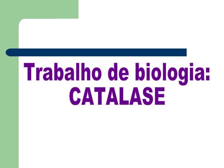 Trabalho de biologia:  CATALASE