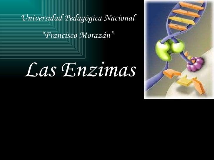 """Las Enzimas   Universidad Pedagógica Nacional  """" Francisco Morazán"""""""
