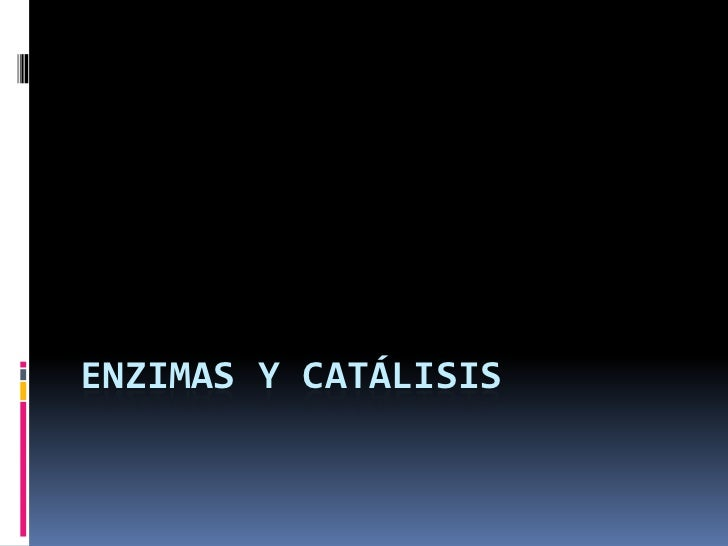 Enzimas y catálisis<br />