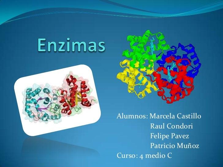 Enzimas<br />Alumnos: Marcela Castillo<br />                  Raul Condori<br />                  Felipe Pavez<br />      ...