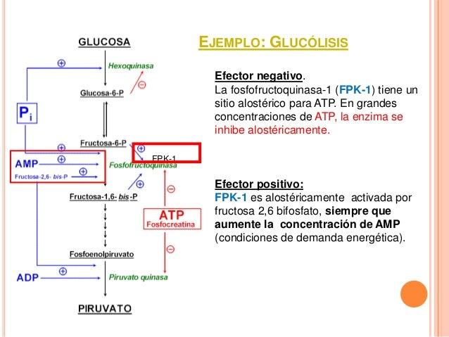 Bioquimica la base molecular de la vida trudy mckee