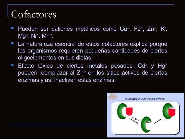 Coenzimas Algunas coenzimas sólo se asocian en formatransitoria con determinada molécula de enzima, porlo que actúan como...