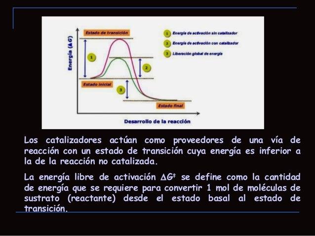"""Interacciones del complejo enzima-sustrato Modelo """"llave y cerradura"""" propuesto por EmilFischer en 1894.- Un enzima disti..."""