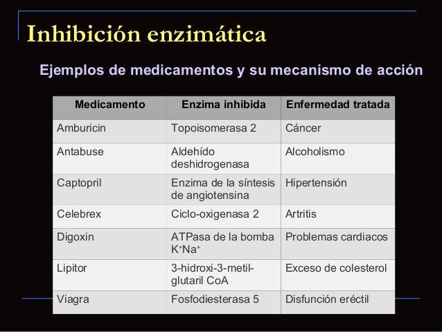 Regulación de la actividad enzimática Sitios de unión alostéricos Las enzimas alostéricas están reguladas por moléculasd...