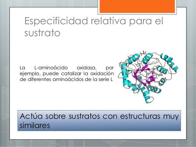 Especificidad relativa para el sustrato Actúa sobre sustratos con estructuras muy similares La L-aminoácido oxidasa, por e...