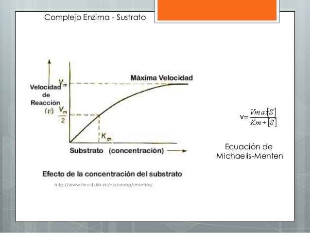 http://www.forest.ula.ve/~rubenhg/enzimas/ v= Ecuación de Michaelis-Menten Complejo Enzima - Sustrato