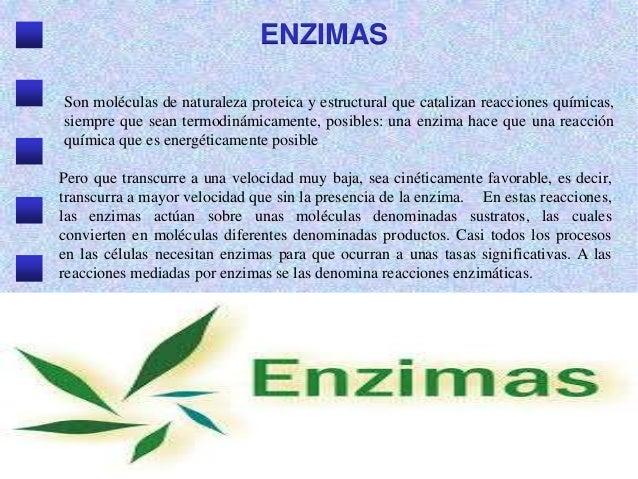 ENZIMAS Son moléculas de naturaleza proteica y estructural que catalizan reacciones químicas, siempre que sean termodinámi...