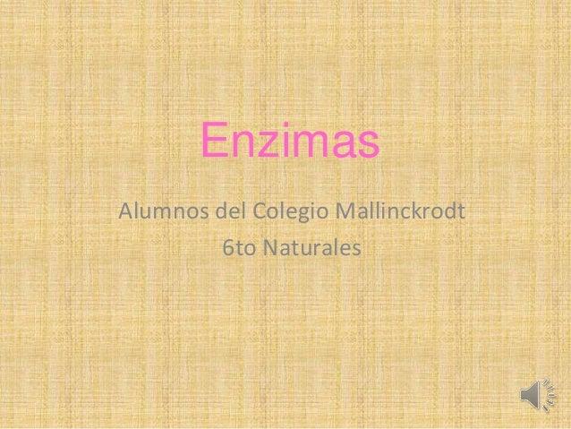 Enzimas Alumnos del Colegio Mallinckrodt 6to Naturales