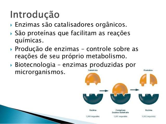 Enzimas Slide 2