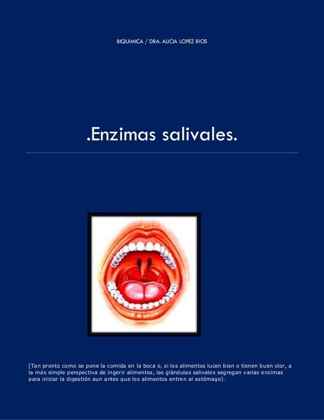 BIQUIMICA / DRA. ALICIA LOPEZ RIOS .Enzimas salivales. [Tan pronto como se pone la comida en la boca o, si los alimentos l...