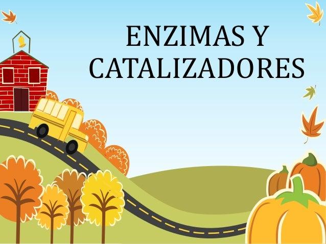 ENZIMAS Y CATALIZADORES