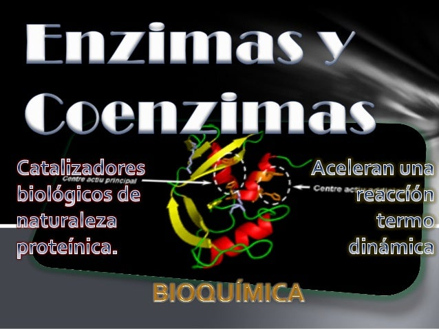 - (traspaso grupo metilo) - (traspaso grupos acilo) - (traspaso residuos de azucares) -Transferencia de grupos nitrogenado...