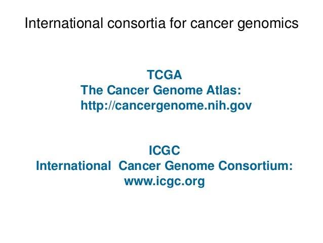 International consortia for cancer genomics TCGA The Cancer Genome Atlas: http://cancergenome.nih.gov ICGC International C...