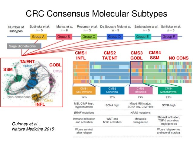 CRC Consensus Molecular Subtypes Guinney et al., Nature Medicine 2015 INFL GOBL TA/ENT SSM CMS1 INFL CMS2 TA/ENT CMS3 GOBL...