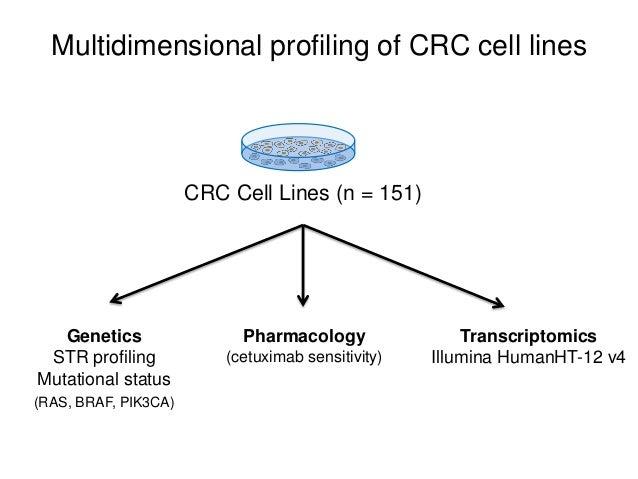Multidimensional profiling of CRC cell lines Genetics STR profiling Mutational status (RAS, BRAF, PIK3CA) Transcriptomics ...