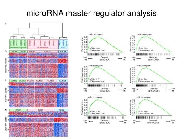 microRNA master regulator analysis