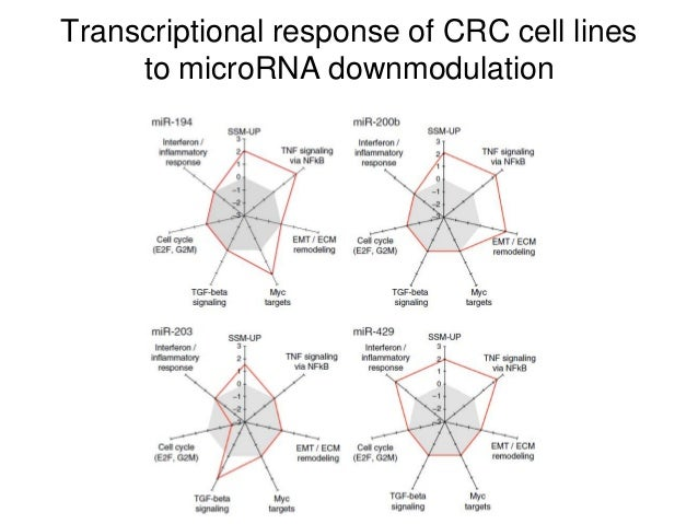 Transcriptional response of CRC cell lines to microRNA downmodulation